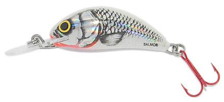 Leurre Salmo Hornet 3,5cm, Silver White Shad!