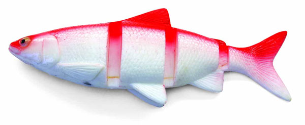 """Castaic Swimmin' Cisco 10"""" (choix entre 2 options) - Red Shad"""