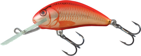 Leurre Salmo Hornet 4cm (4 options) - UV Orange Crush (UVC)