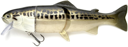 "Castaic Real Bait Hard Head 12"" (choix entre 9 options)"