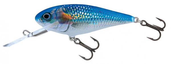 Salmo Executor SDR (choix entre 3 options) - Holo Shiner (HSH)