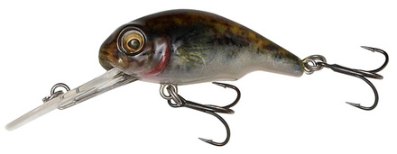 Savage Gear 3D Goby Crank 5 cm, Goby !